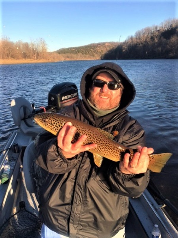 White River Brown Trout Pictures
